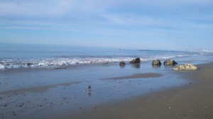 Hendry Beach, Santa Barbara