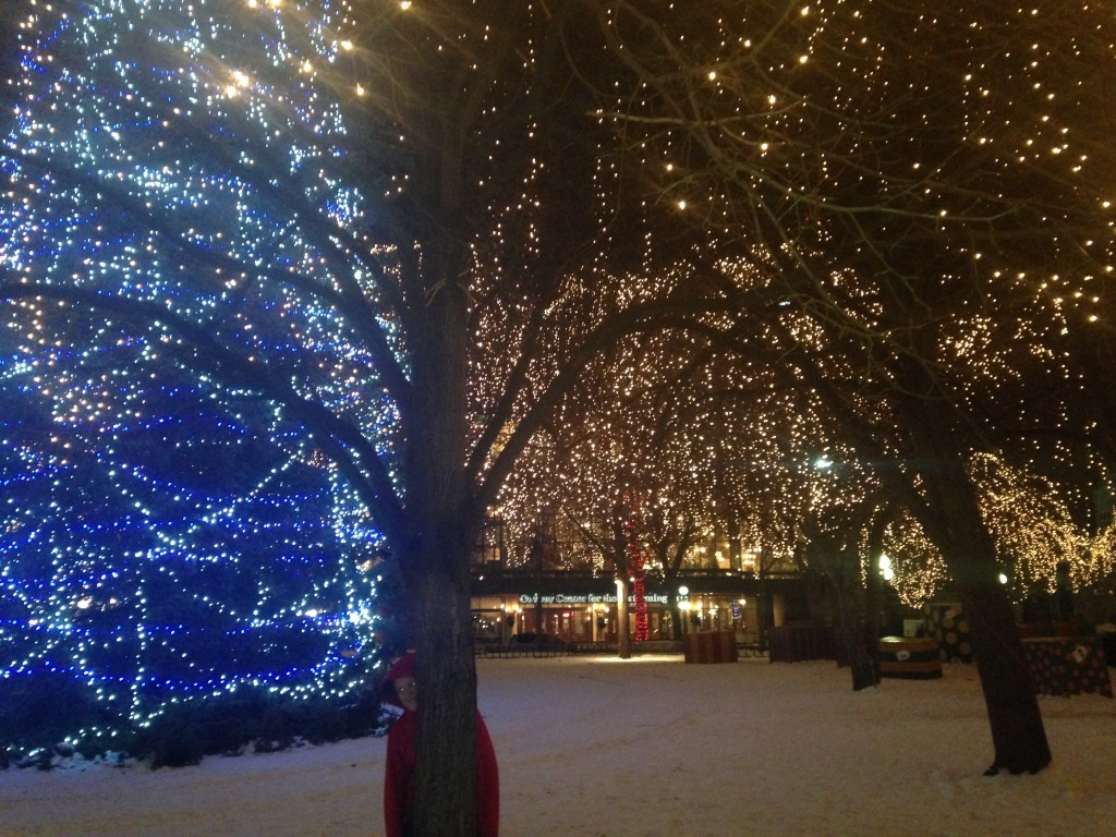 Twinkle lights in Rice Park