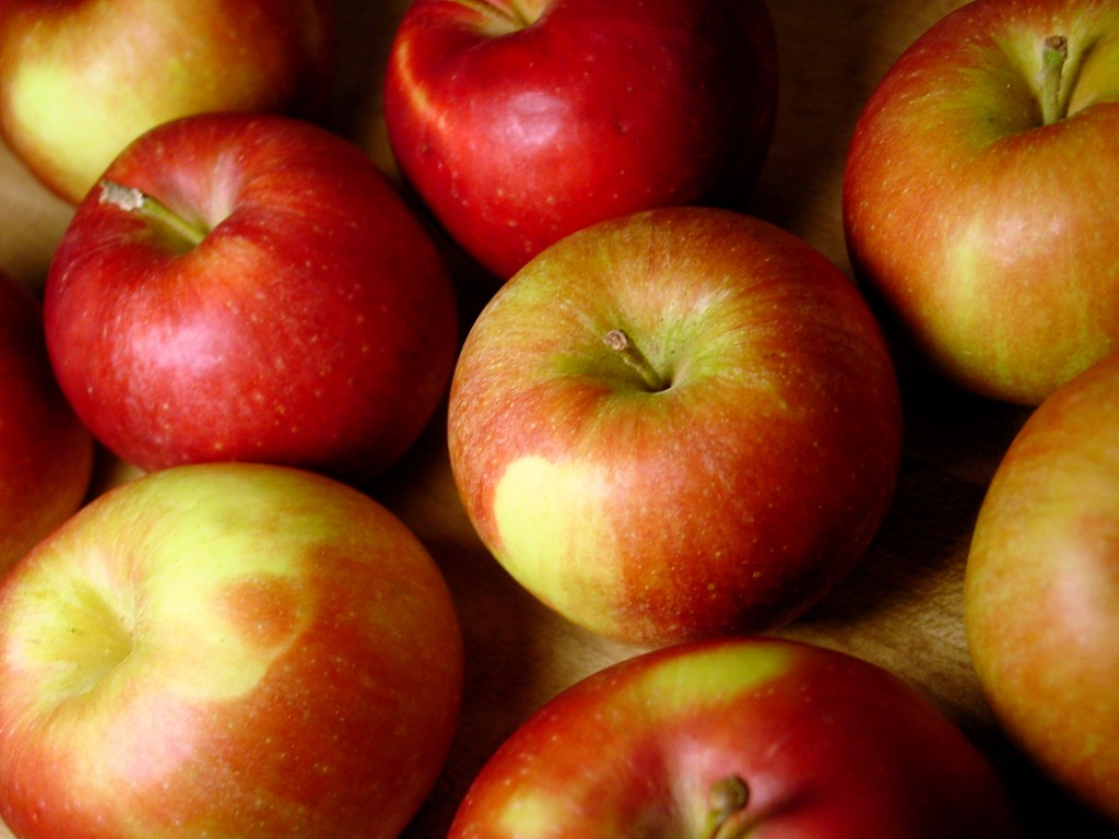 apples, fall foods