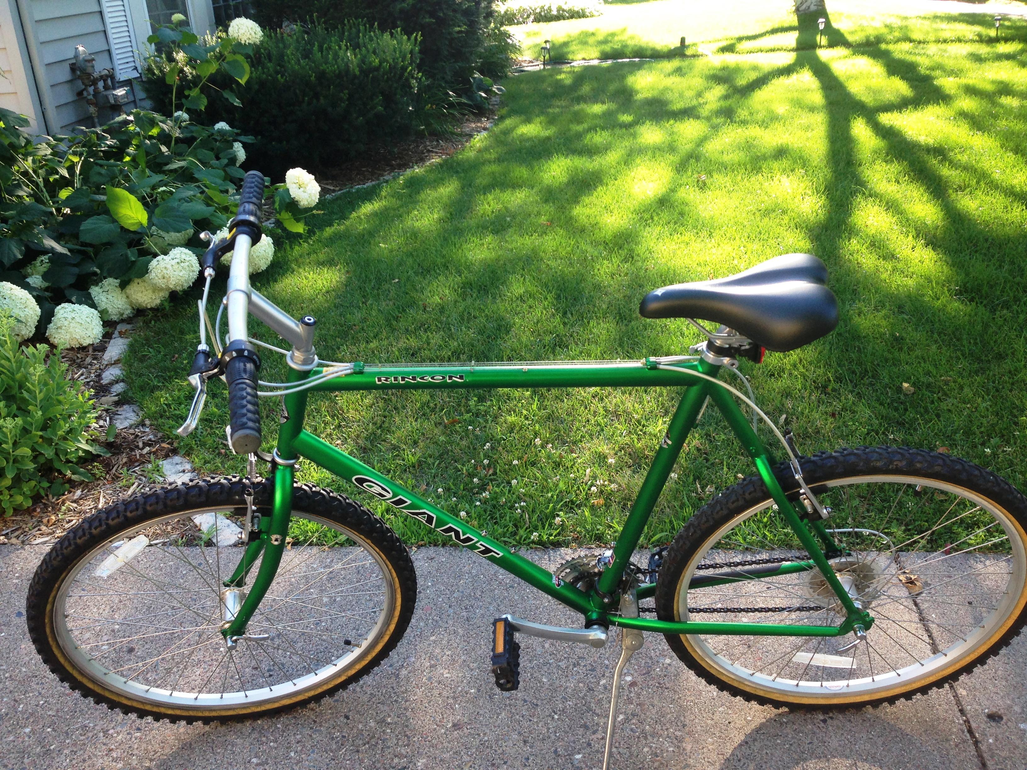 Lori's Bike